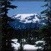Comox Glacier from Forbidden Plateau